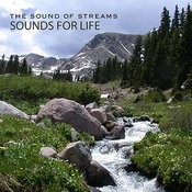 Sound Of Streams Songs