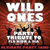 Wild Ones (Party Tribute To Flo Rida & Sia) Songs