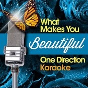 What Makes You Beautiful - One Direction Karaoke Songs