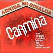 Arriba Mi Sinaloa Songs
