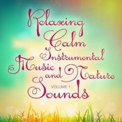 Calm Relaxing Instrumental Music And Nature Sounds, Vol. 1 Songs