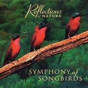 Symphony Of Songbirds Songs
