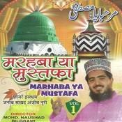 Shah E Madina Song