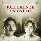 Pattukunte Padivelu Songs