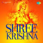 Sree Krishna Songs