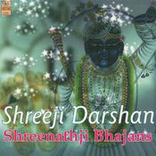 Shree Nath Ji Karu Prathna (feat. Deepali Somaiya) Song
