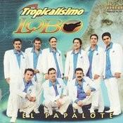 El Papalote Songs
