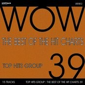 The Best Of The Hit Charts, Vol. 39 Songs