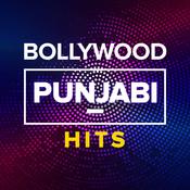 Bollywood Punjabi Hits