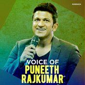 Voice of Puneeth Raj Kumar