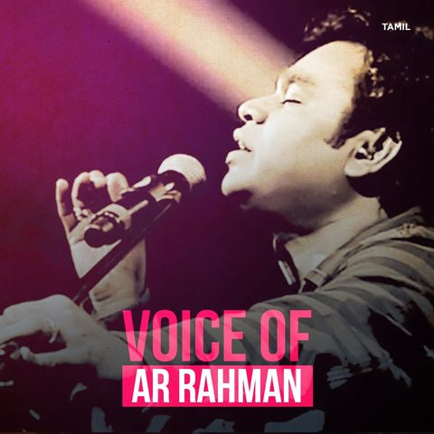 A.R. Rahman Superhit Songs Collection - Hindi Music Beat
