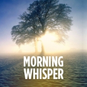 Morning Whisper Music Playlist: Best MP3 Songs on Gaana com