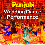 Punjabi Wedding Dance Performance