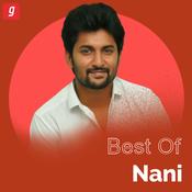 Best of Nani