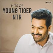 Hits of Young Tiger NTR