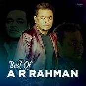 Best of AR Rahman - Tamil Music Playlist: Best MP3 Songs on