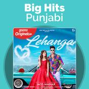 Big Hits - Punjabi