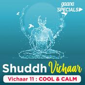 Vichaar 11 -Cool & Calm Song