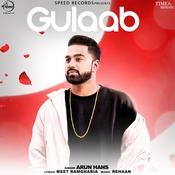 Gulaab Song
