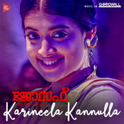 Karineela Kannulla Pennu Song