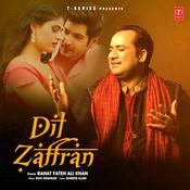 Dil Zaffran Song