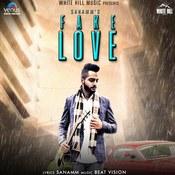 Fake Love Song