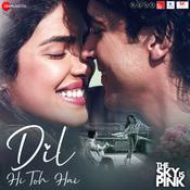 Dil Hi Toh Hai Song