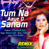 Tum Na Aaye O Sanam - Remix Song