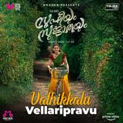 Vathikkalu Vellaripravu Song