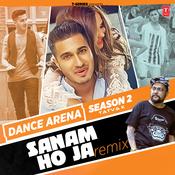 Sanam Ho Ja Remix Song