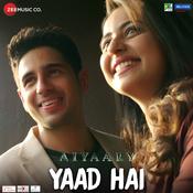 Yaad Hai Song