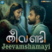 Jeevamshamayi Song