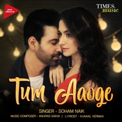 Tum Aaoge Tum Aaoge Movie Songs