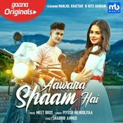 Aawara Shaam Hai Song