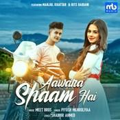 Aawara Shaam Hai Song