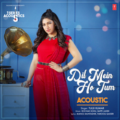 Dil Mein Ho Tum Acoustic Song